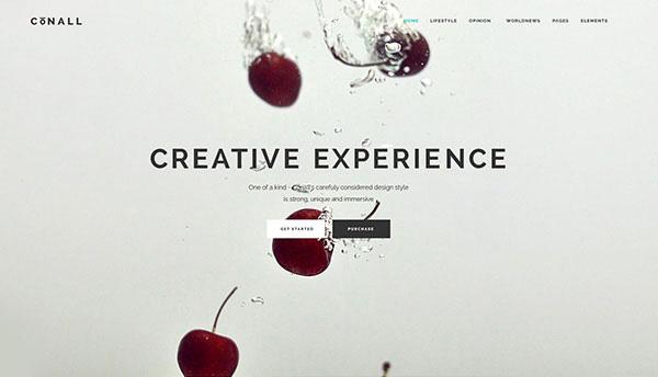 Creative experience